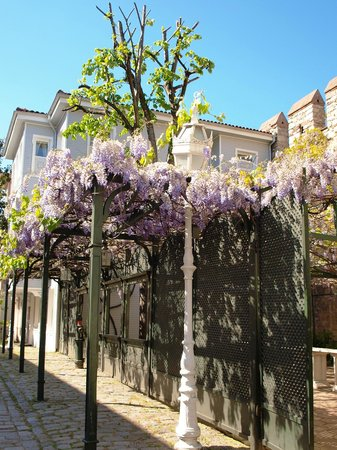 Historic Areas of Istanbul: Spring time - passage close to Topkapi