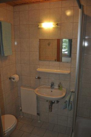 Ski Lodge Jaktman : Bathroom