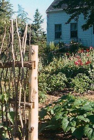 Kitchen Garden: Front Garden