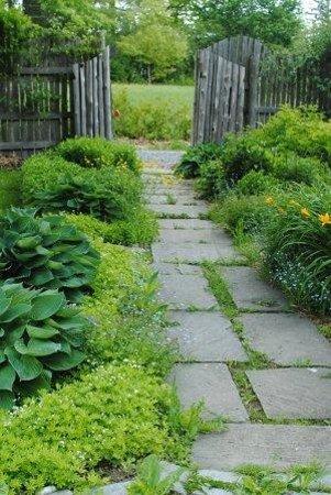 Kitchen Garden: Walkway
