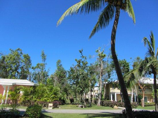 Paradisus Rio de Oro Resort & Spa:                   Outside view                 