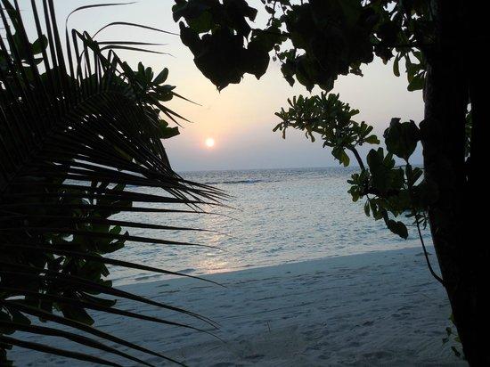 VOI Maayafushi Resort:                   uno scorcio