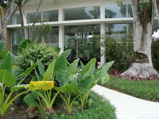 Luxury Bahia Principe Sian Ka'an Don Pablo Collection :                   entrée Maiko