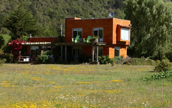 Los Maquis Hotel:                                                                         so many wild flowers!!!