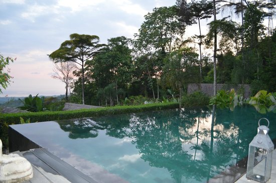 Oxygen Jungle Villas:                   Dusk at the pool