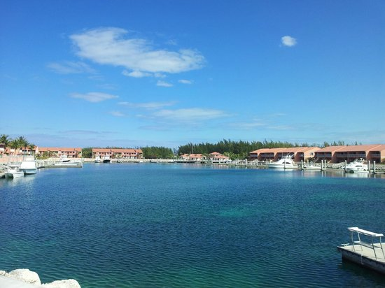Bimini Sands Resort and Marina:                   Marina