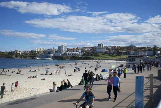Bondi beach picture of bondi beach sydney tripadvisor
