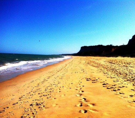 Hotel Pousada Saudosa Maloca:                   Beach