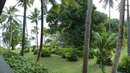 The Warwick Fiji:                   view from room