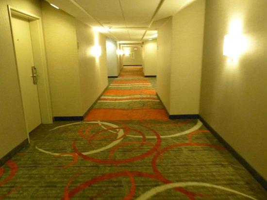 Magnolia Hotel Dallas-Park Cities: Smokey smelling hallway. Cool carpet.