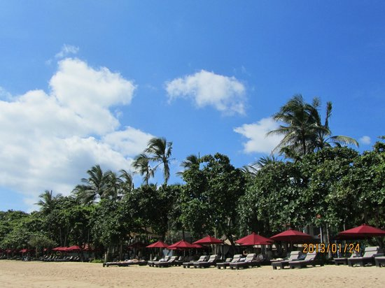 The Laguna, a Luxury Collection Resort & Spa:                   beachside