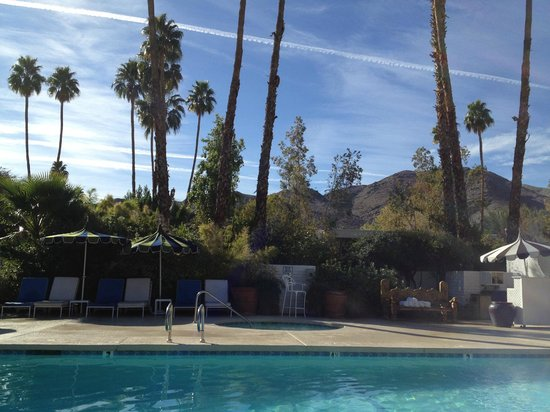 Parker Palm Springs:                   San Jacinto mountains from pool