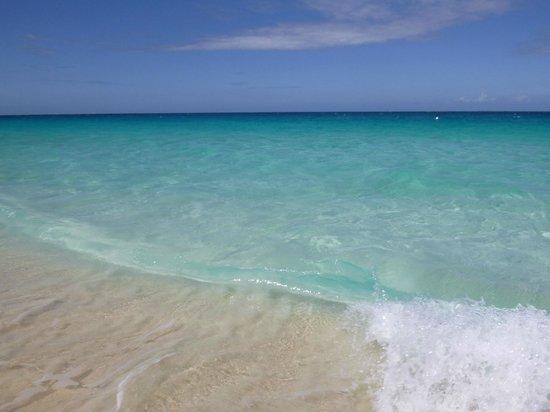 Frangipani Beach Resort :                   The water
