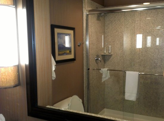 Holiday Inn Express Hotel & Suites Denver Northeast - Brighton:                   Nice large shower