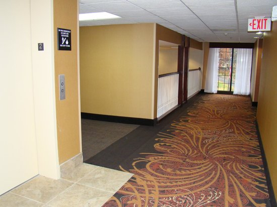 Hampton Inn Helen:                   CLEAN hallways and grounds were impressive!