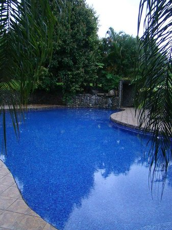 Blue Banyan Inn: Pool