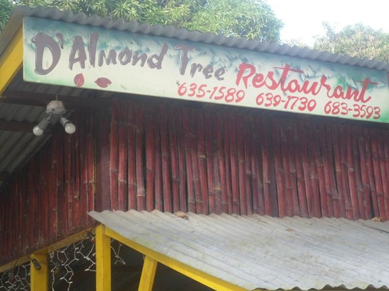 D'Almond Tree Restaurant: Beautiful bamboo design and shot of the sign