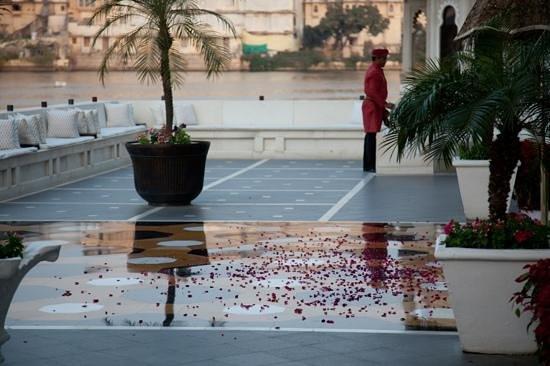 Taj Lake Palace Udaipur:                   welcome flower petals