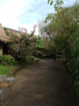 Sapu Lidi Resort :                   The corridor