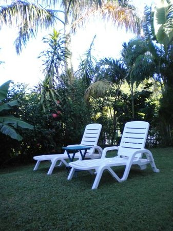 EV's Vacation Rentals Rincon Puerto Rico: Backyard