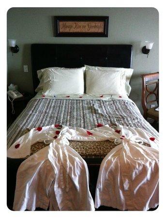 ستارفيش مانور أوشنفرونت هوتل:                   Bed                 