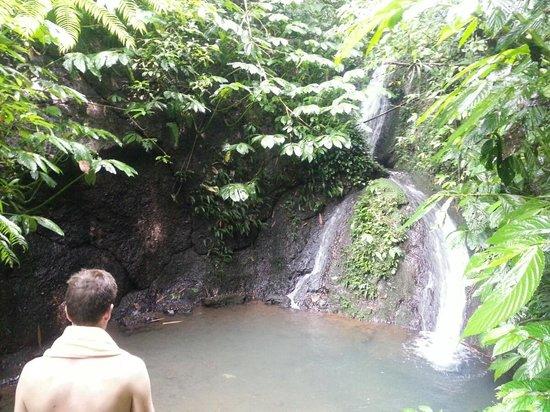 Sarinbuana Eco Lodge:                   Natural Waterhole