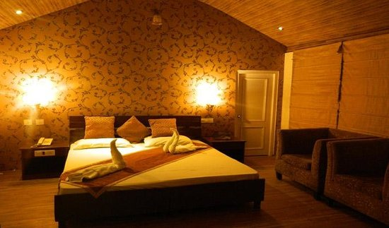 The exotica dharamshala dharamsala asia india hotel - Hotels in dharamshala with swimming pool ...