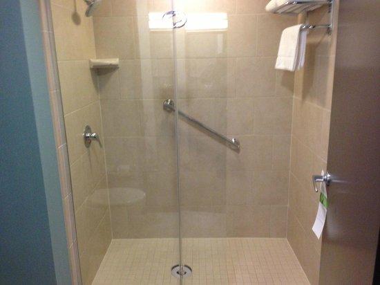 Hyatt Place Herndon / Dulles Airport - East :                   Shower