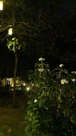 River Kwai Resotel :                                     jardin la nuit...quel calme...