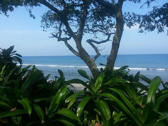 Holiday Resort Lombok:                   utsikt över havet