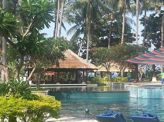 Holiday Resort Lombok:                   från solstolen