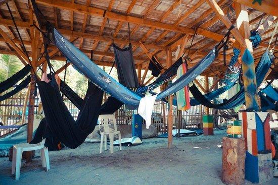 the circle hostel  tent and hammock area tent and hammock area   picture of the circle hostel san felipe      rh   tripadvisor