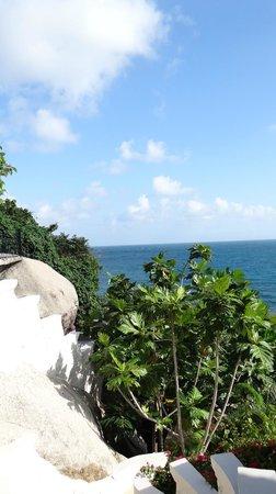 Jamahkiri Resort & Spa:                                     vue depuis les marches