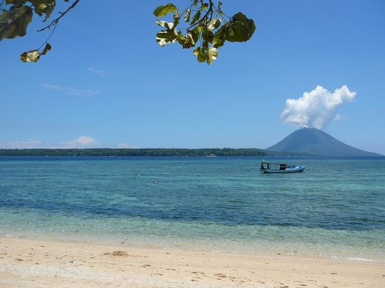 Living Colours Dive Resort:                                     View from beach