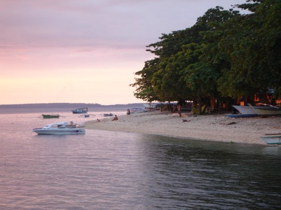 Living Colours Dive Resort:                                     Beach on opposite island