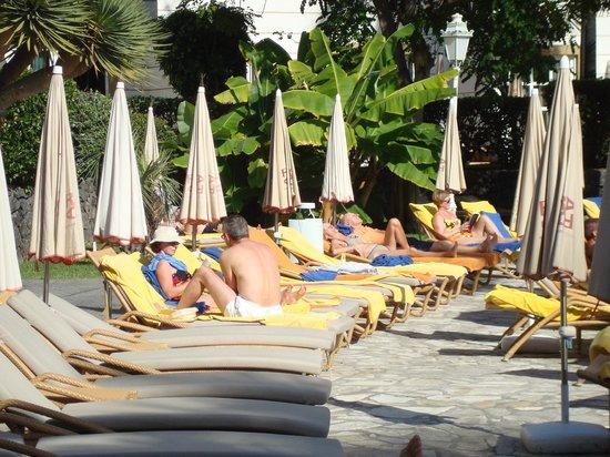 Jardines de Nivaria - Adrian Hoteles :                                     soleil à la piscine