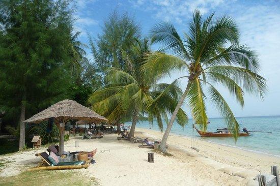 CoCo Cottage Koh Ngai:                                     La plage