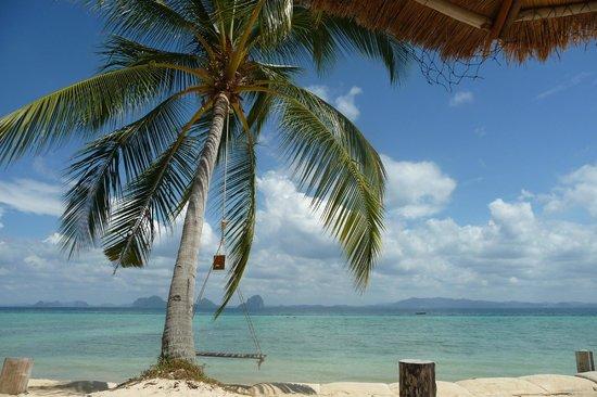 CoCo Cottage Koh Ngai:                                     Vue des transats de l'hôtel