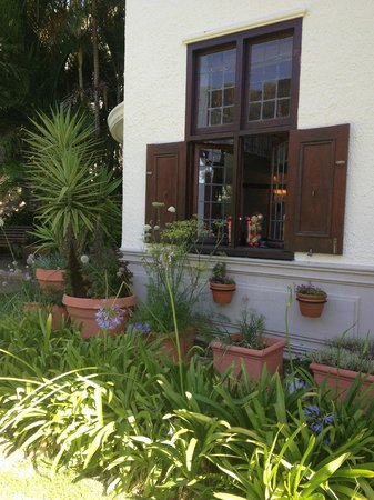 Camps Bay Retreat :                   Garden