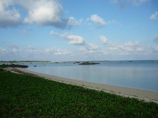 Inaunosato:                   宿から歩いて2分 鏡のような佐和田の浜