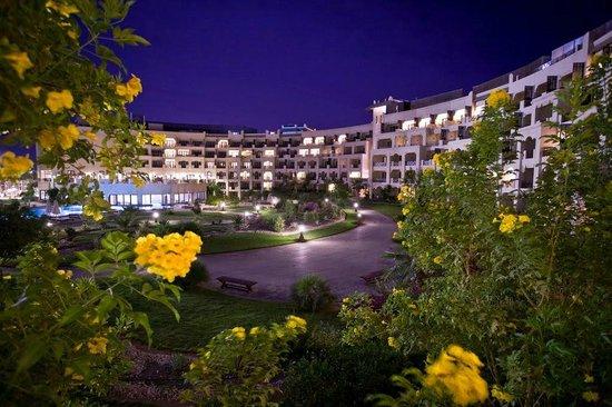 فندق شتايجنبرجر الداو بيتش:                   Hotel from garden                 