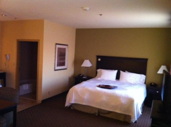 Hampton Inn & Suites Tulsa North/Owasso:                   King Suite.  Has sofa, wet bar with fridge and microwave, and desk (not shown)