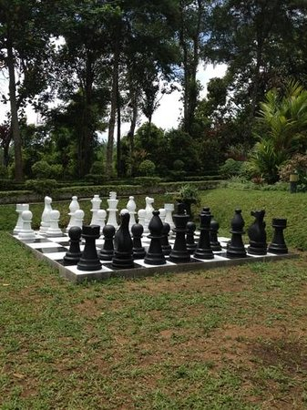 Ancoombra Tea Estate Bungalow:                                     chess is an outdoor game here
