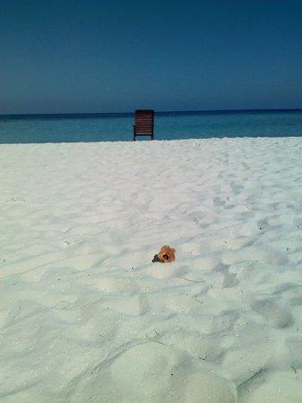 Eriyadu Island Resort:                   oltre le mangrovie...il paradiso!