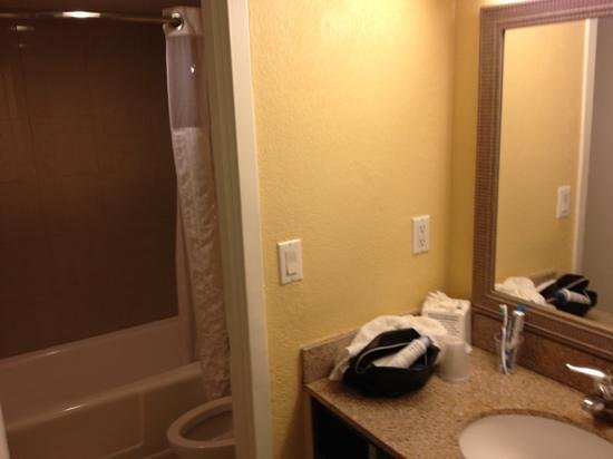 Wyndham Lake Buena Vista Disney Springs Resort Area:                   bagno con vasca