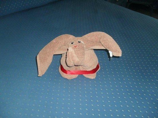 Hotel Riu Cancun:                   a little elephant