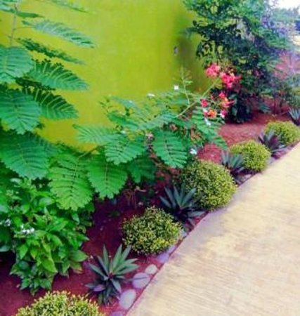 Serenity Lodges Dominica: Floral Garden