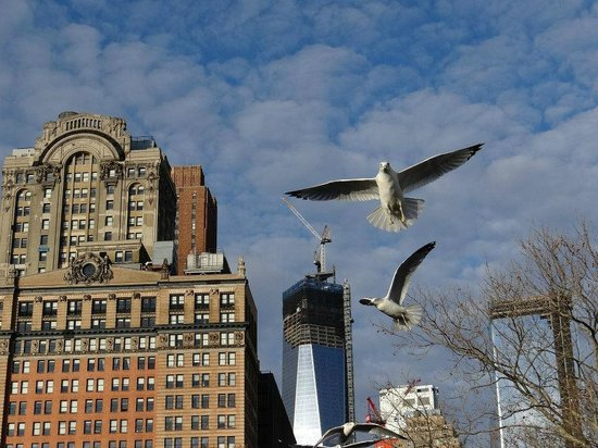 This pic was taken from inside of Battery Park.  It has amazing views of the surrounding area!