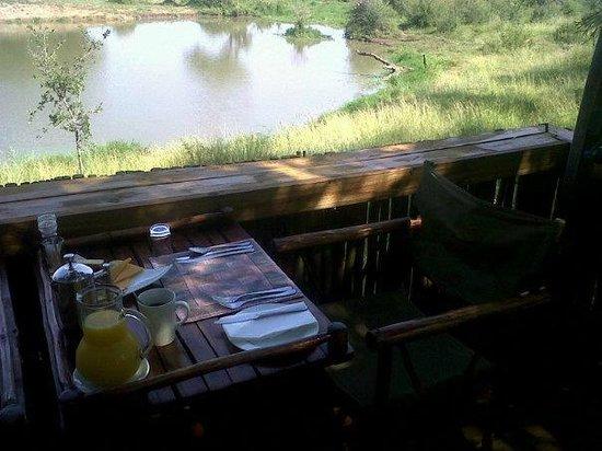 Jaci's Tree Lodge:                   Outside room overlooking the waterhole