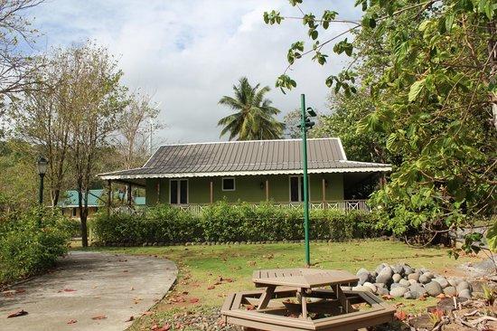 Rosalie Bay Resort:                   Riverside cabin